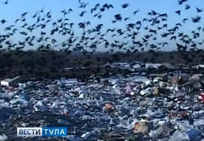 Современный полигон для мусора должен открыться под Тулой через год