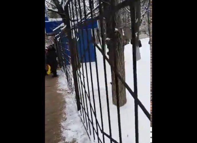Эвакуация школы в Мясново (Тула)