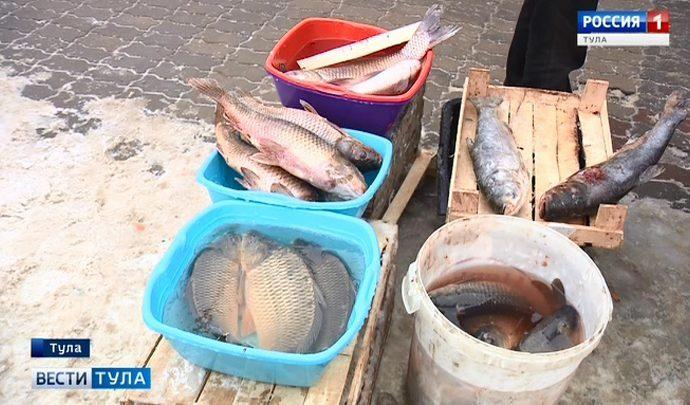 Что показал анализ рыбы, продающейся на развалах в Туле?