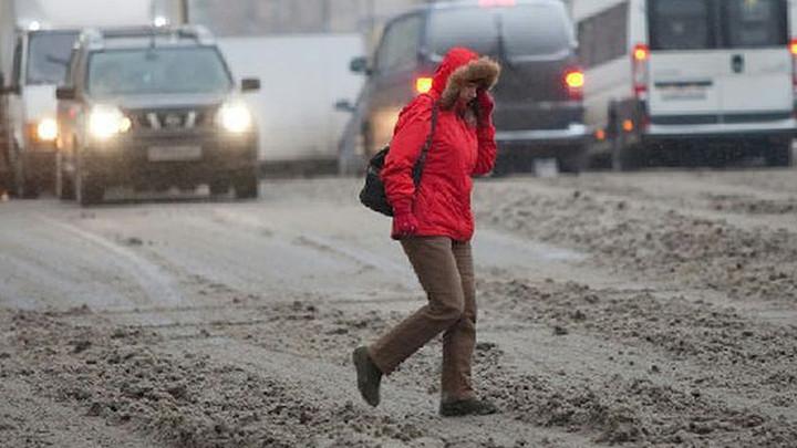 Тульские пешеходы чаще водителей нарушают ПДД?