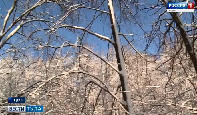 Тульские засеки станут особо охраняемыми природными территориями