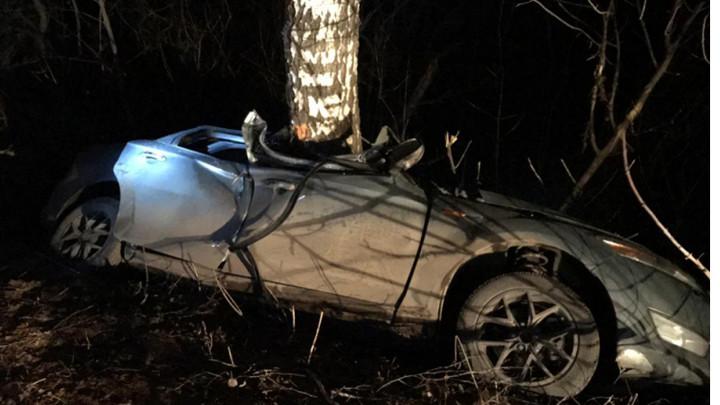 В Тульской области Ford вылетел с дороги и врезался в дерево