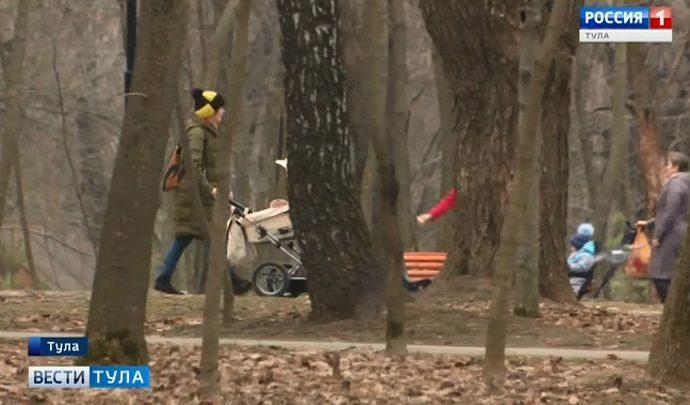 Тулякам обещают не застраивать Рогожинский парк