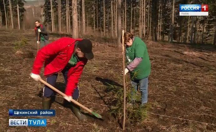 Депутаты Тульской Облдумы не отступили от идеи восстановить леса Ясной Поляны