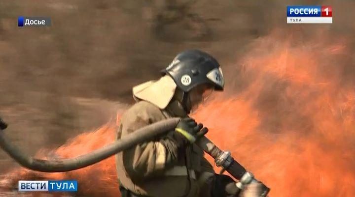 Авиаразведка не обнаружила очагов лесных пожаров в Тульской области