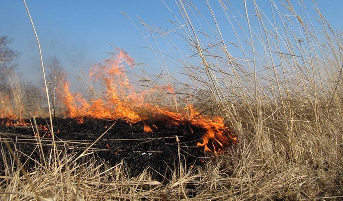 В Туле началась подготовка к пожароопасному сезону