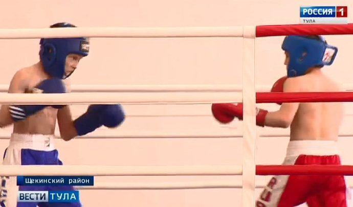 95-летие Щекинского района отметили турниром по кикбоксингу