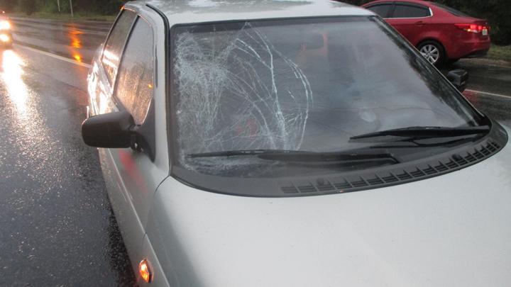 На дороге «Тула – Новомосковск» женщина попала под колеса  «ВАЗа»