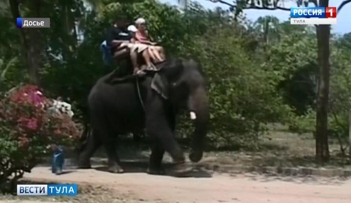 Туляк привез из Таиланда лихорадку Денге