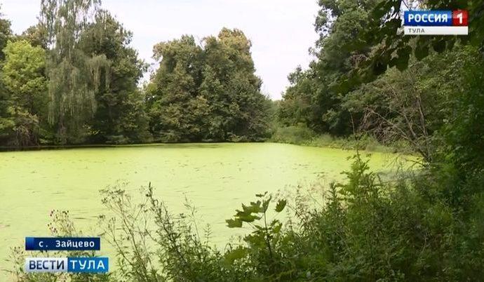 В селе Зайцево барский пруд превратился в сточную яму
