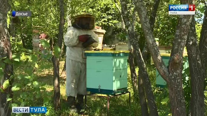 В Тульской области окажут поддержку пчеловодам