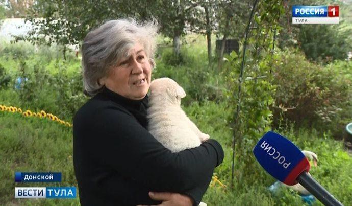 Спасительница животных из Донского сама просит о помощи