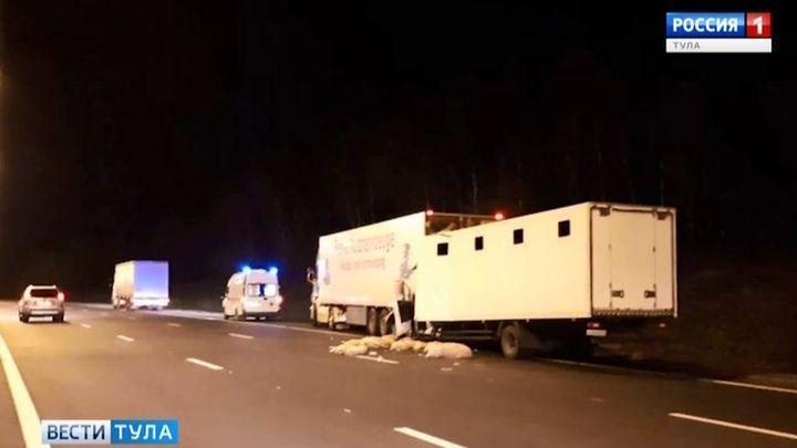 В ДТП погиб водитель грузовика, врезавшийся в фуру со свиньями