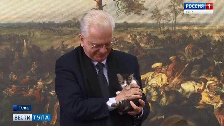В Туле появился первый музейный кот