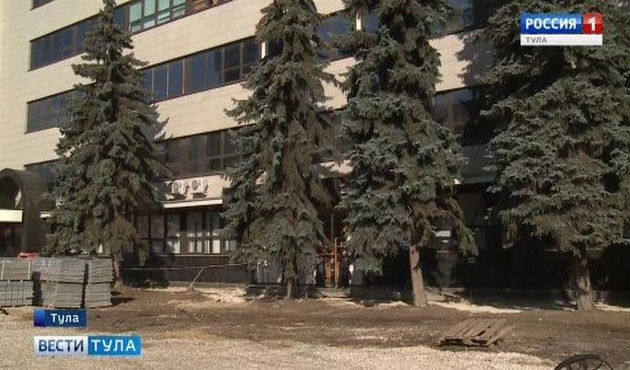 В Туле у главпочтамта срубили 50-летнюю ель
