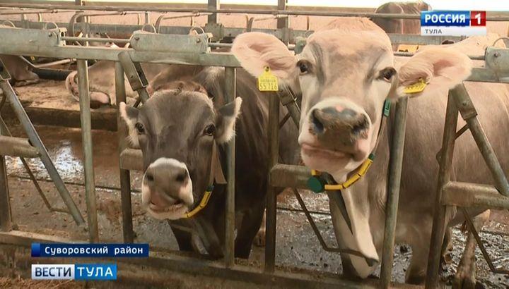 В Тульской области налаживают производство протеина