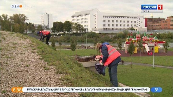 В Туле завершаются работы по осеннему озеленению