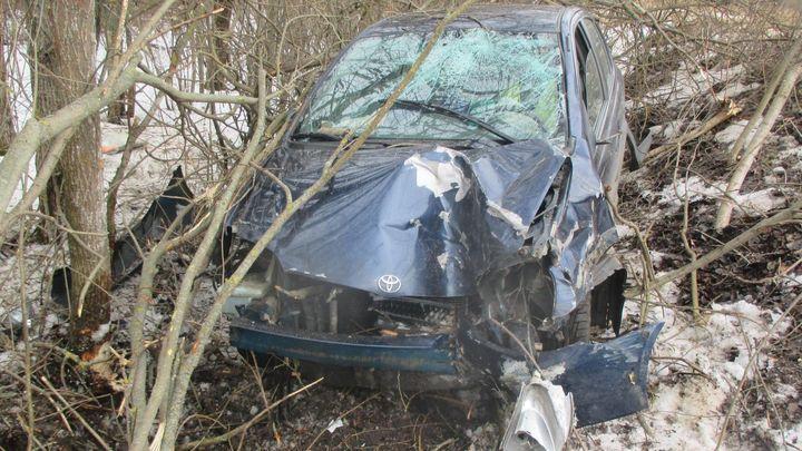В Кимовском районе машину остановило дерево