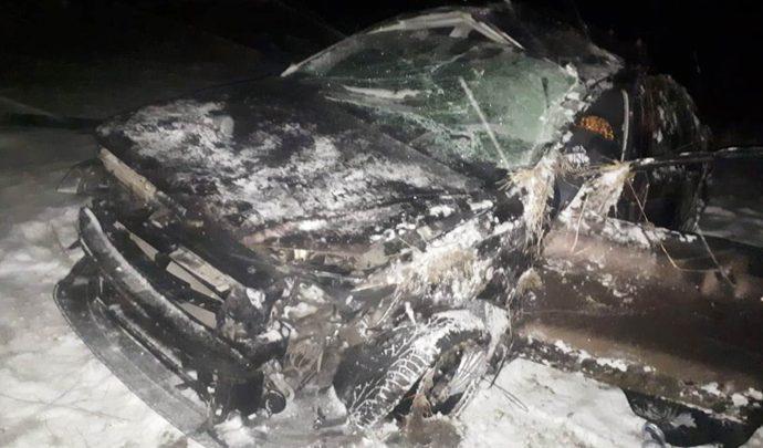 В Тульской области погиб водитель улетевшей в кювет иномарки