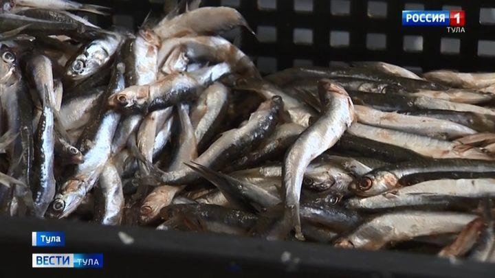 Тульский Роспотребнадзор забраковал более 1700 кг. рыбы