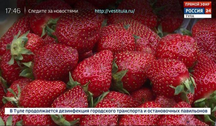 Россия 24 Тула. Эфир от 16.06.2020