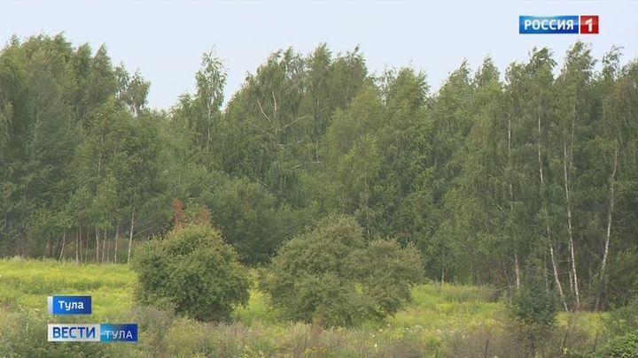 В Тульской области участились случаи пропажи грибников