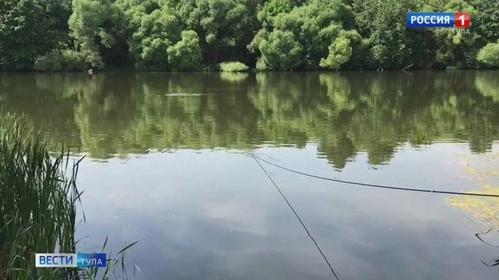 Местные пруды становятся популярнее у туляков