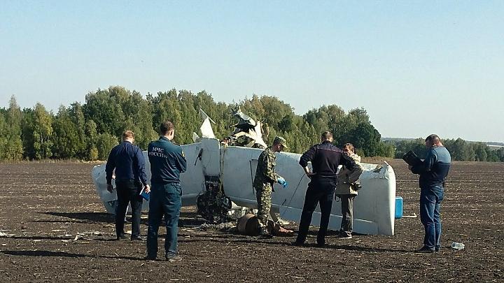 В Тульской области разбился самолёт
