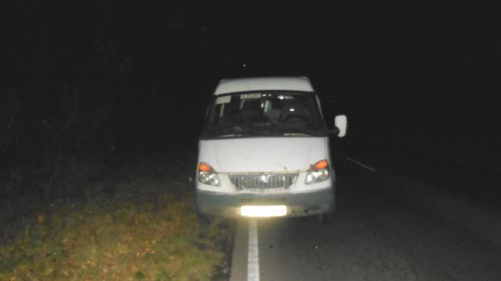 В Тульской области водитель микроавтобуса сбил пешехода