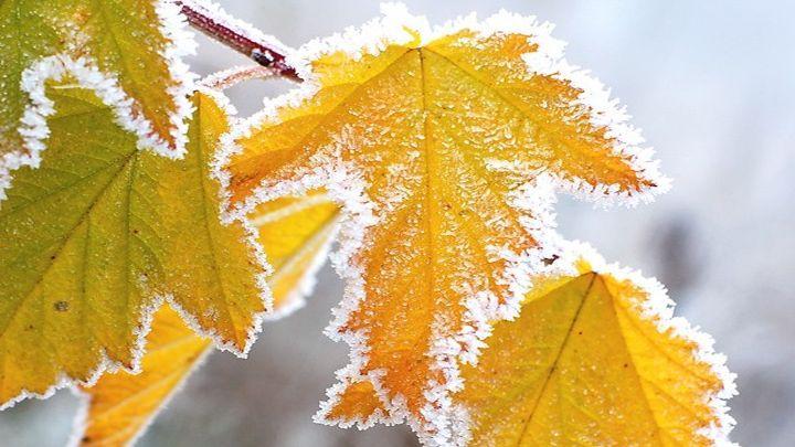 Каким будет ноябрь и когда наступит зима