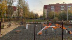 Когда в Платоновском парке достроят площадку для выгула собак