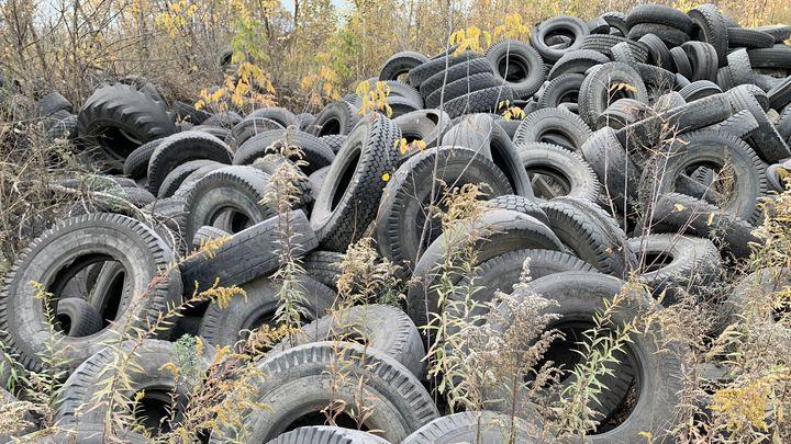 Экологи обнаружили свалку опасных отходов в Большой Туле