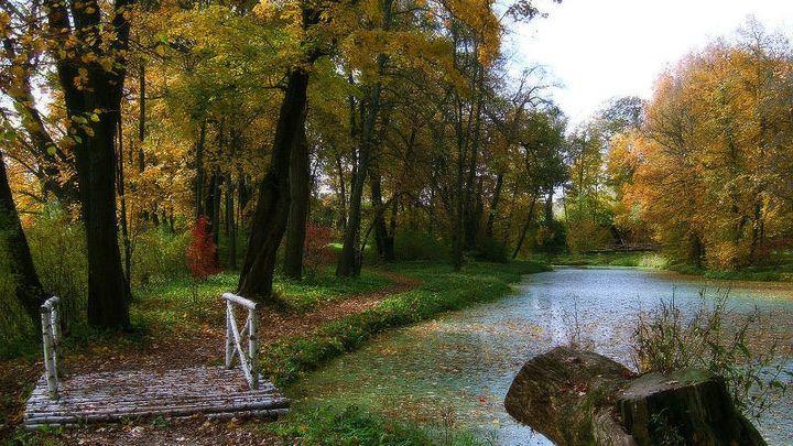 Тульская область собрала в себе уникальные памятники природы