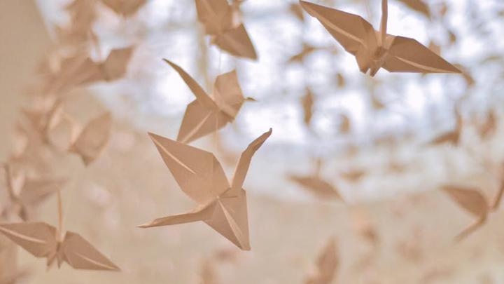 Бумажные драконы прилетели в щёкинский дворец творчества