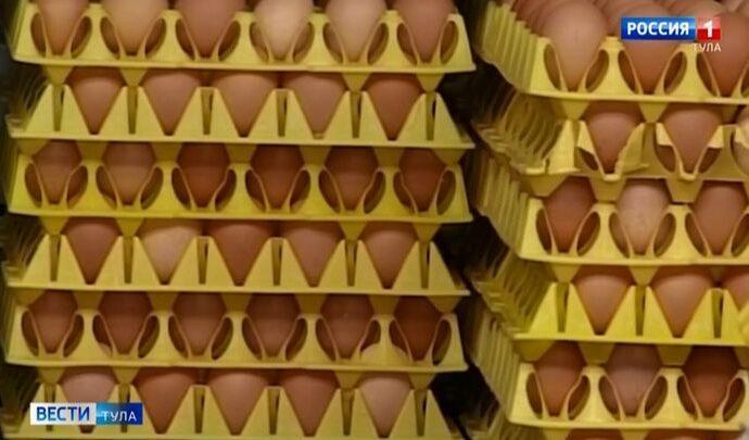 На птицефабрике «Тульская» вновь выявлены многочисленные нарушения