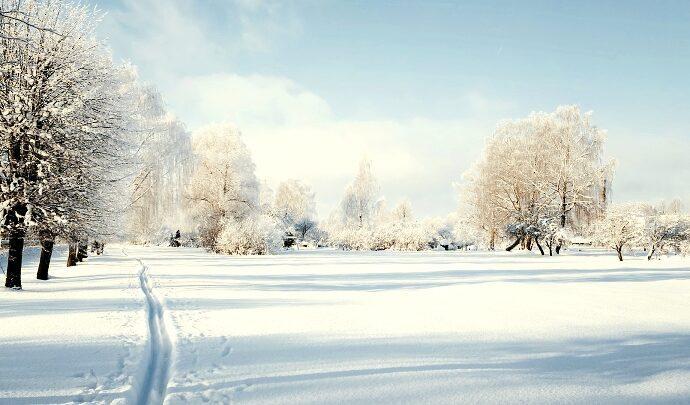 Зима, мороз и солнце