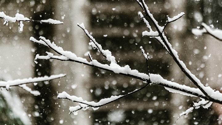 Зима, снег, снегопад