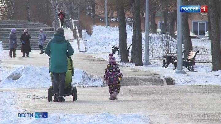 Выплаты на ребенка к Новому году в Тульской области начнут перечислять на этой неделе