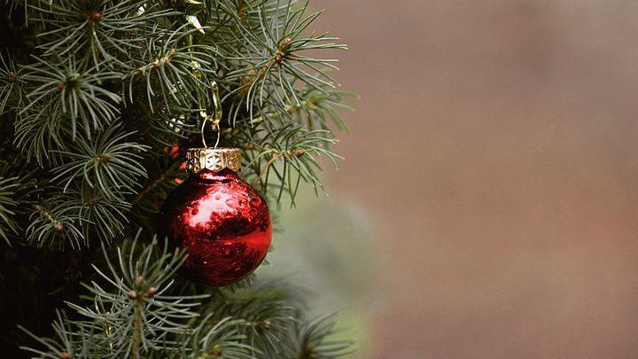 Как правильно ухаживать за новогодней ёлкой