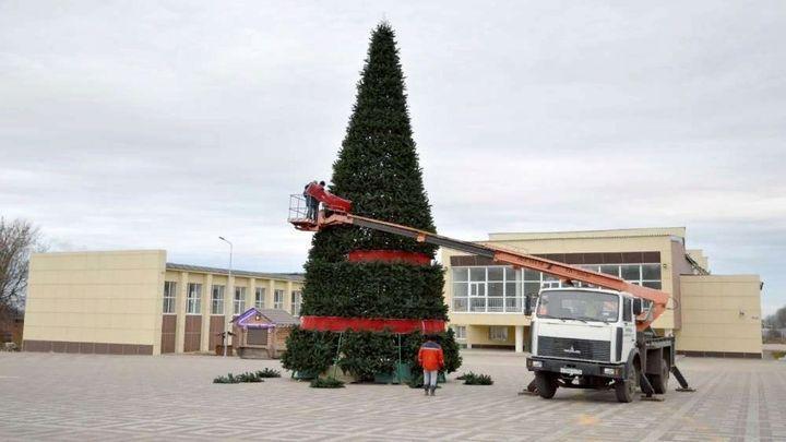 Главное новогоднее дерево установили в Ефремове