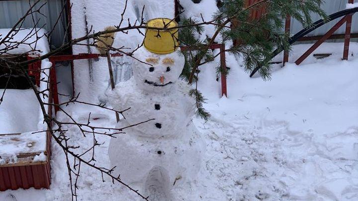 Туляки делятся фотографиями снеговиков после снегопада