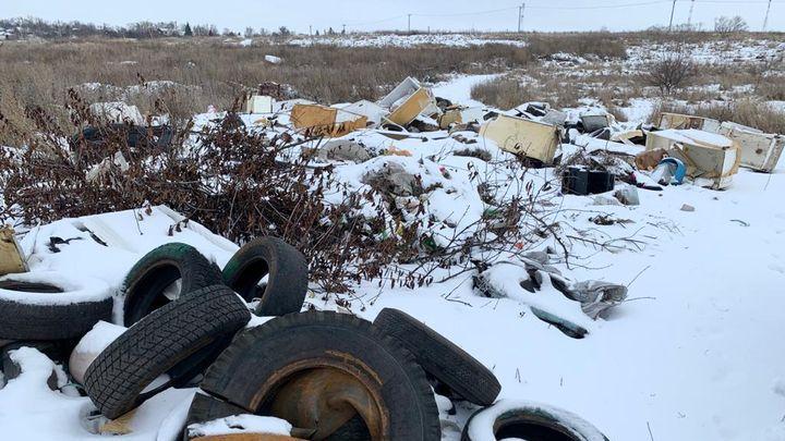 В Тульской области нашли еще одну незаконную старую свалку