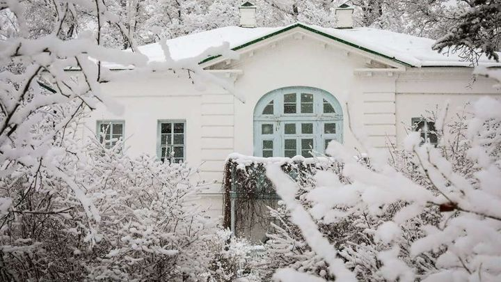 Онлайн Новый год пройдёт в Ясной Поляне