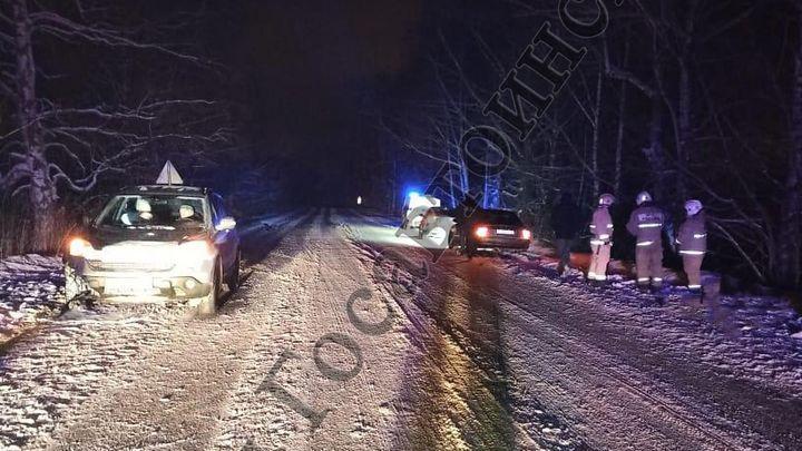 В Киреевском районе лежащий на дороге мужчина погиб под колёсами