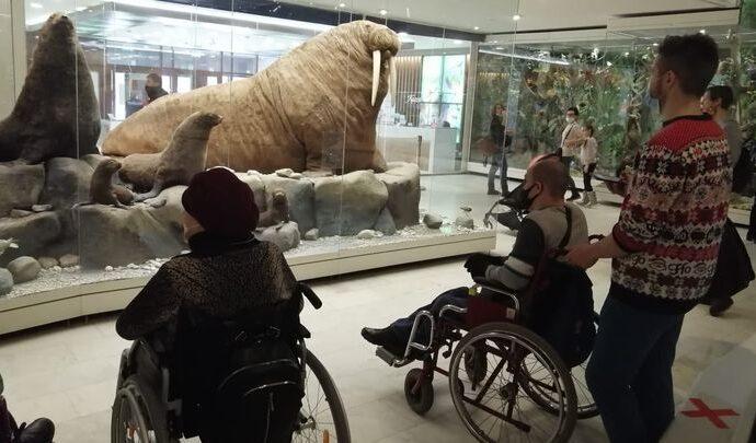 Туляки с инвалидностью побывали в Дарвиновском музее