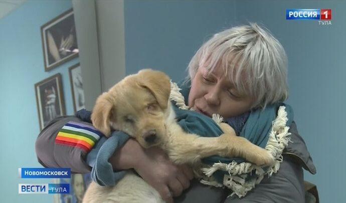 Слепой щенок из Новомосковска ищет семью