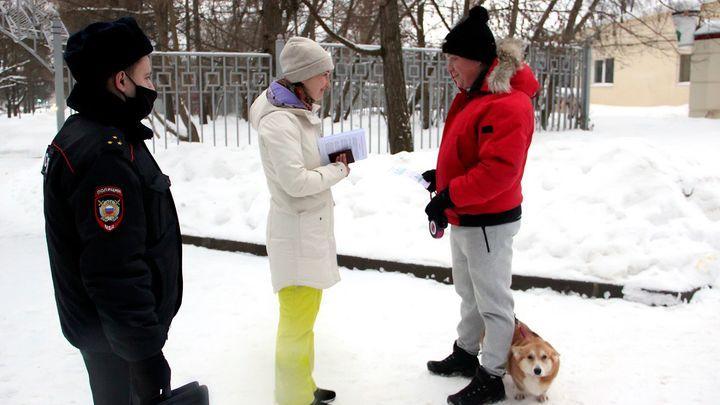 Выгул собак в парках дорого обходится тулякам