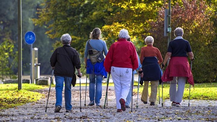 Старики, пенсионеры, скандинавская ходьба