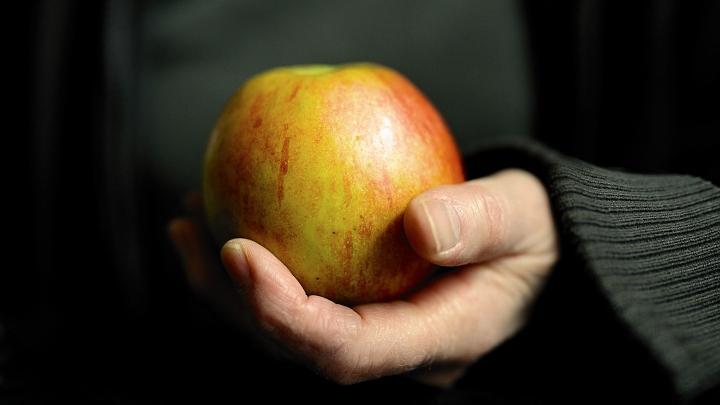 Яблоко, еда, продукты, диета, великий пост