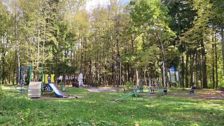 В Алексине жители проголосовали за благоустройство детской площадки
